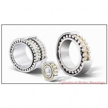 0.5 Inch | 12.7 Millimeter x 0.813 Inch | 20.65 Millimeter x 1.25 Inch | 31.75 Millimeter  CONSOLIDATED BEARING 92120 Cylindrical Roller Bearings