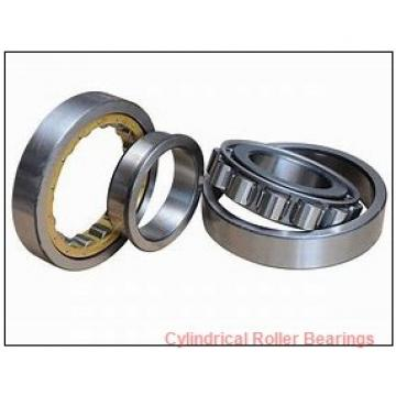 1.181 Inch | 30 Millimeter x 2.441 Inch | 62 Millimeter x 0.63 Inch | 16 Millimeter  CONSOLIDATED BEARING NF-206E C/3 Cylindrical Roller Bearings