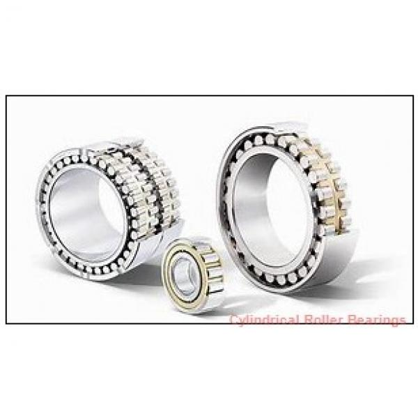 0.5 Inch | 12.7 Millimeter x 0.813 Inch | 20.65 Millimeter x 1.25 Inch | 31.75 Millimeter  CONSOLIDATED BEARING 92120 Cylindrical Roller Bearings #1 image